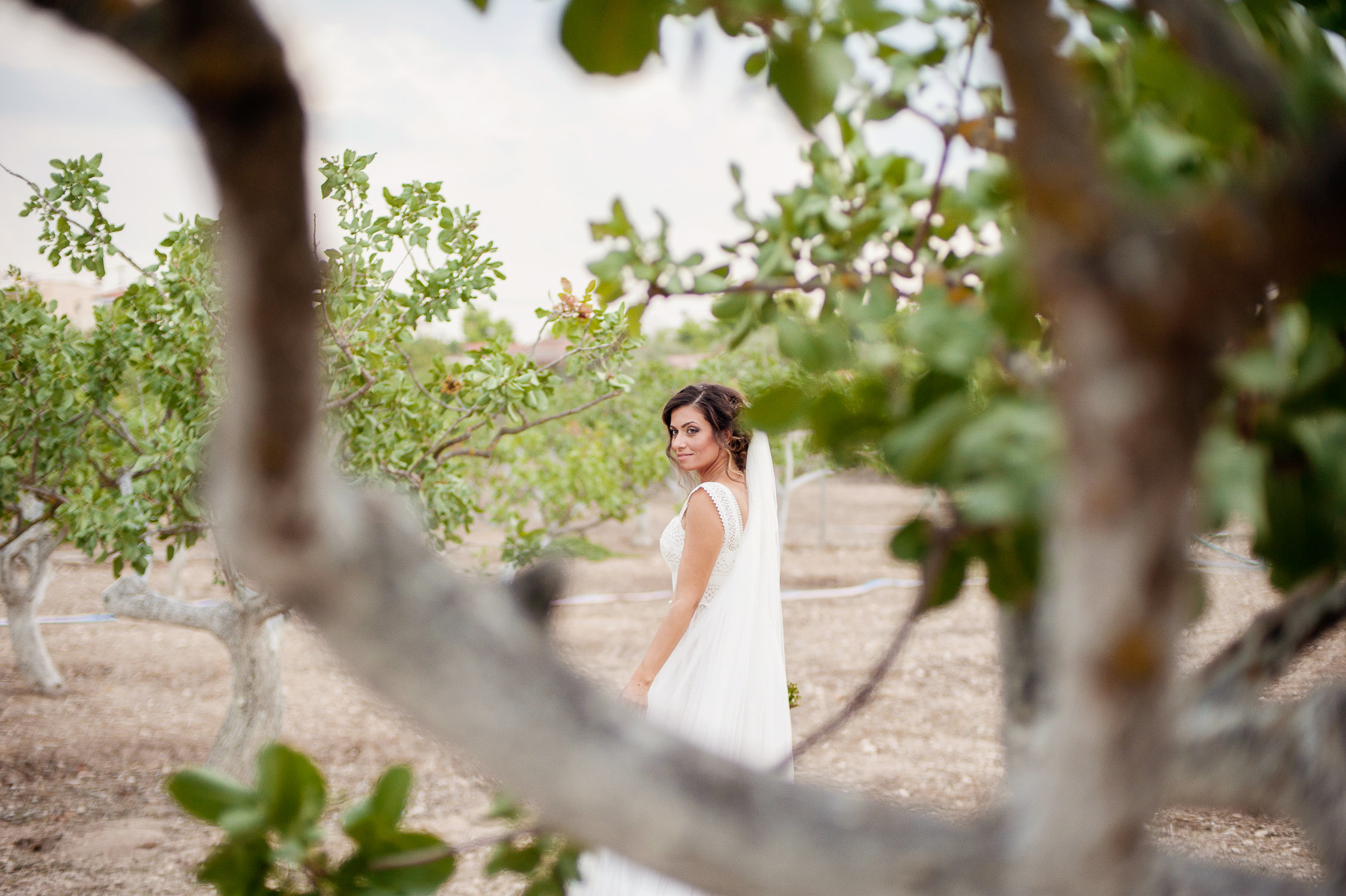 wedding_aegina_greece